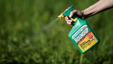 California Jury Concludes Monsanto Weed Killer Caused Man's Cancer