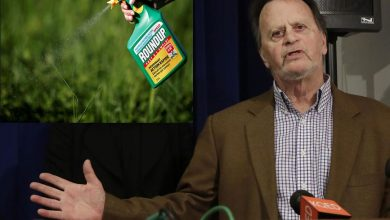 Monsanto Ordered to Compensate $80 million Towards the Man Affected by Roundup Exposure