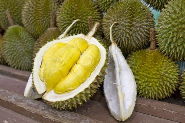 Durian healthy or not
